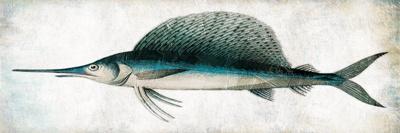 Swordfish Prints by Jace Grey