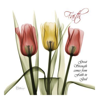 Faith Tulips Prints by Albert Koetsier