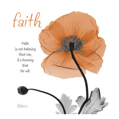Iceland Poppy Faith Prints by Albert Koetsier