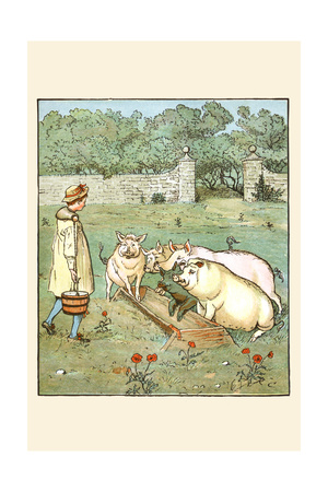 Pigs are Fed in their Trough Posters by Randolph Caldecott