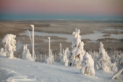 Frozen Landscape Photographic Print by  WildCat78