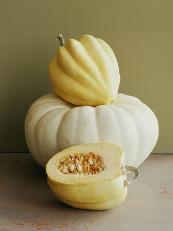 Varieties of Squash. Photographic Print by Victoria Pearson