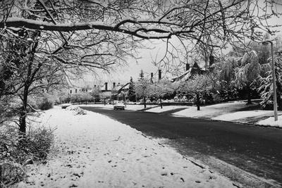 Snow Scene Photographic Print by Evening Standard