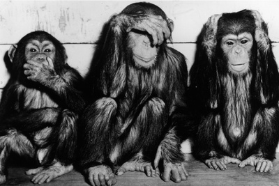 Three Wise Monkeys Photographic Print by  Keystone
