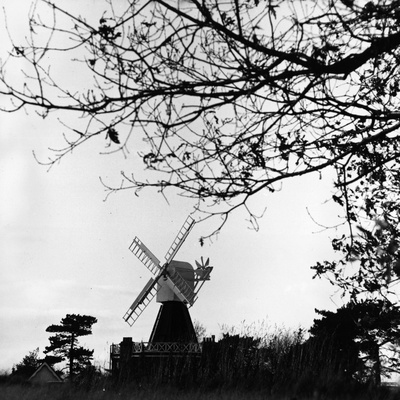 Old Windmill Photographic Print by Peter Trulock