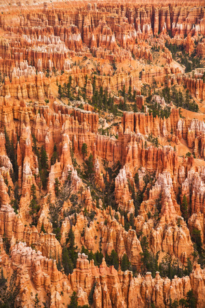 Usa, Utah, Bryce Canyon, Landscape with Cliff Photographic Print by Daniel Grill