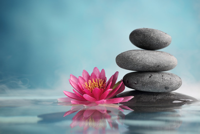 Spa Still Life with Water Lily and Zen Stone in a Serenity Pool Photographic Print by Liang Zhang
