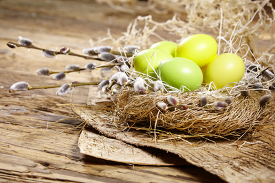 Easter Basket with Easter Eggs on Wooden Background. Photographic Print by  ZoomTeam
