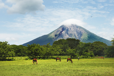 Concepcion Volcano with Grazing Horses Photographic Print by Paul Taylor
