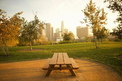 Urban Park Photographic Print by Seth Joel