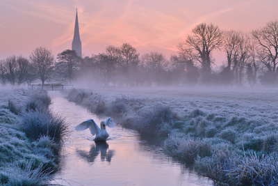Salisbury Water Meadows Photographic Print by Andreas Jones