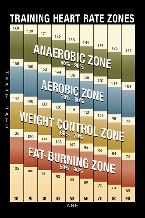 Training Heart Rate Zones Chart (Modern) Posters