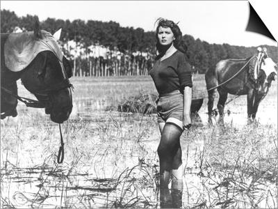 Silvana Mangano, Bitter Rice, 1949 (Riso Amaro) Posters