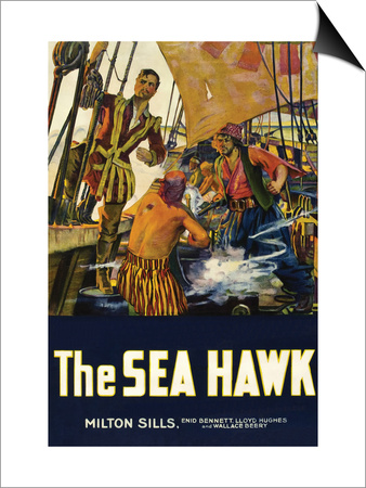 The Sea Hawk Art