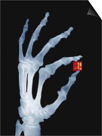 Skeletal Hand Holding Computer Chip Posters by Charles O'Rear