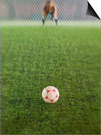 Goalie Anticipating Soccer Kick Prints by David Madison!