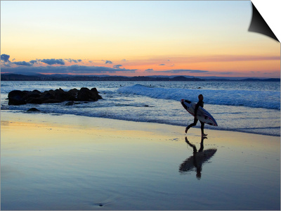Surfer at Dusk, Gold Coast, Queensland, Australia Posters by David Wall
