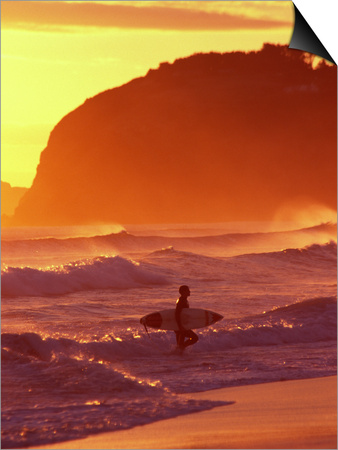 Surfer at Sunset, St Kilda Beach, Dunedin, New Zealand Posters by David Wall