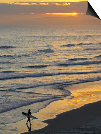Surfer at Blackhead Beach, South of Dunedin, South Island, New Zealand Prints by David Wall