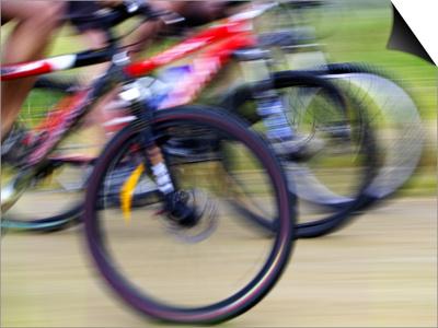 Mountain Bike Race, Bannockburn, near Cromwell, Central Otago, South Island, New Zealand Posters by David Wall