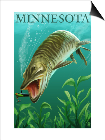 Minnesota - Muskie Scene Prints by  Lantern Press