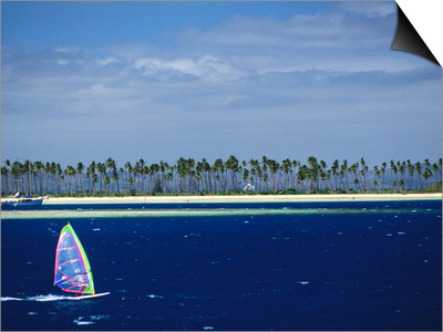 Windsurfer, Plantation Island, Fiji Prints by Peter Hendrie