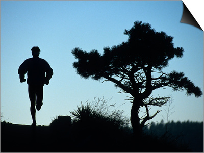 Silhouette of Runner and Tree Prints