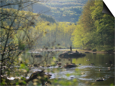 Father and Son Fly-Fishing, Deerfield River, MA Prints by Kindra Clineff