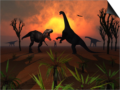 T. Rex Confronts a Group of Camarasaurus Dinosaurs Posters by  Stocktrek Images