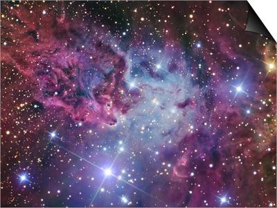 Fox Fur Nebula Posters by  Stocktrek Images