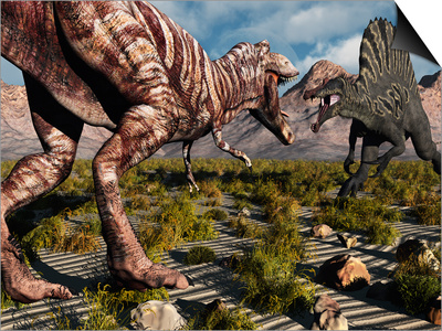 A Confrontation Between a T. Rex and a Spinosaurus Dinosaur Art by  Stocktrek Images