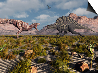 A Confrontation Between a T. Rex and a Spinosaurus Dinosaur Posters by  Stocktrek Images