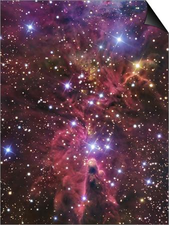 Stellar Nursery Located Towards the Constellation of Monoceros Prints by  Stocktrek Images