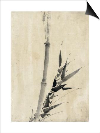 Japan: Bamboo, C1830-1850 Prints by Katsushika Hokusai