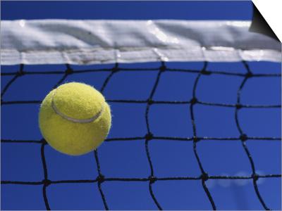 Tennis Ball Hitting Net Posters