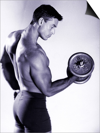 Male Bodybuilder Curling a Dumbbell Art