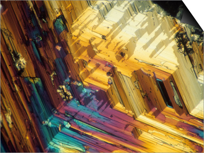 Polarized View of Inositol Crystals, LM Art by David Rintoul