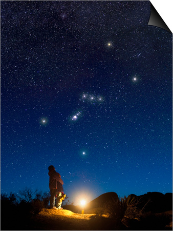 Star Gazers Observing Orion Poster by David Nunuk