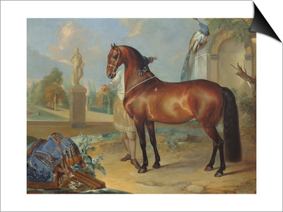 The Bay Horse' Sincero' Art by Johann Georg Hamilton