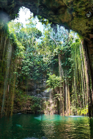 Cenote Ik Kil Fotografisk tryk af Pola Damonte via Getty Images