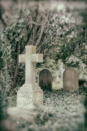 Grave Stones Photographic Print by Tim Kahane