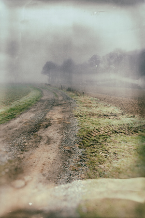 Rural Country Scene on Foggy Winters Morning Photographic Print by Tim Kahane