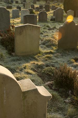 Sunlight on Gravestones Photographic Print by Tim Kahane