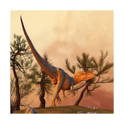 Allosaurus, a Large Theropod Dinosaur from the Late Jurassic Period Posters