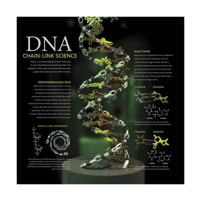 3D Poster Illustration of Dna Components Functionally Compared to a Chain Link biology and chemistry poster for classrooms