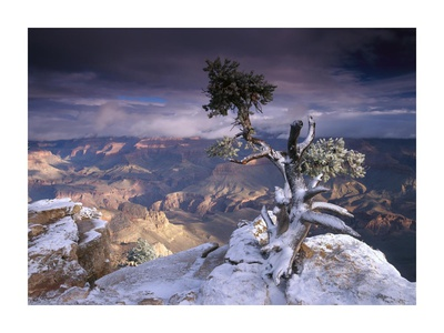 Photo of the South Rim at the Grand Canyon from Yaki Point things to do at Grand Canyon