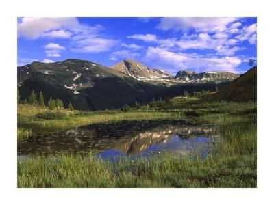West Needle Mountains, Weminuche Wilderness, Colorado Print by Tim Fitzharris