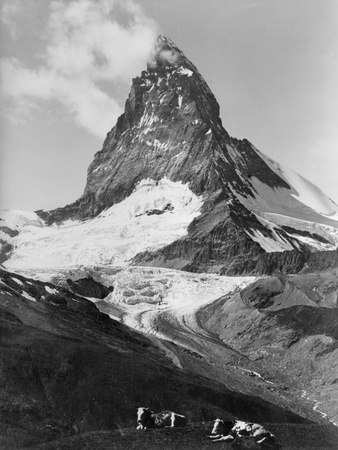 View of the Matterhorn Photographic Print by Philip Gendreau