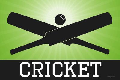 Cricket Green Sports Poster Print Prints