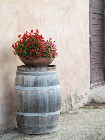 Europe, Italy, Tuscany. Flower Pot on Old Wine Barrel at Winery Photographic Print by Julie Eggers